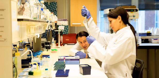 Igone in het lab