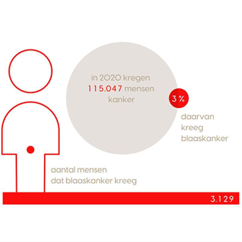 Blaaskanker in cijfers (uitsnede infographic)