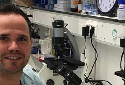 Zeldzame kanker bij kinderen onderzoeken in organoïds