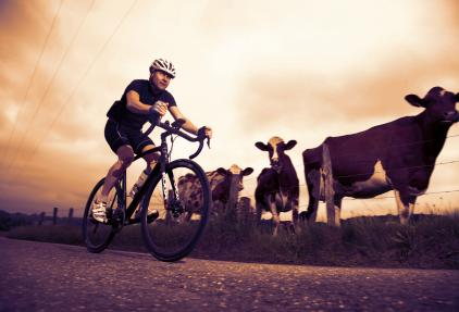 Midzomer Challenge: 275 kilometer fietsen