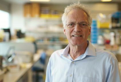 Prof. dr. René Bernards