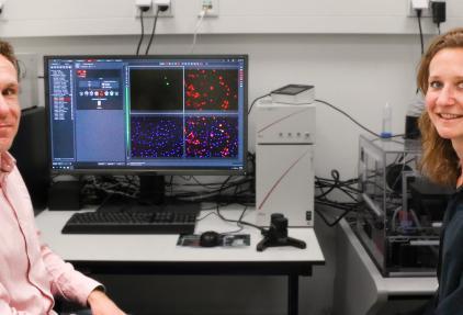 Inkijkje in de trukendoos van kankercellen